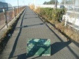 柳島下 (1)
